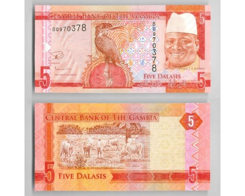 Банкнота 5 даласи Гамбия (60) /БЕЗ СКИДКИ/